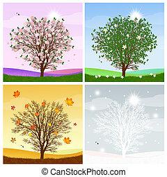 tree in the four season