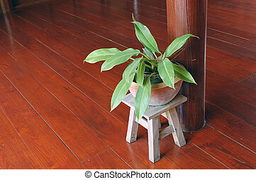 A potted plant in a traditional wooden Thai house