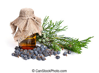 Juniperus sabina with green and ripe Cones (berries). Essential oil in the pharmaceutical bottle. Isolated on white