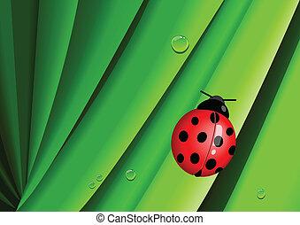 Illustration of a bug on leaves