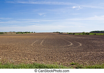 Farm field and green grass under blue sky