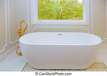 Large furnished bathroom in luxury home with bathtub