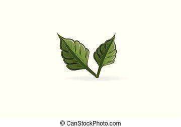 Leaf health nature logo vector