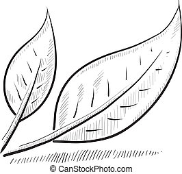 Doodle style leaf or nature vector illustration