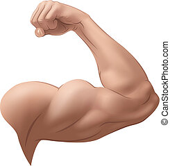 Man's Arm. Vector Illustration (with gradient meshes)