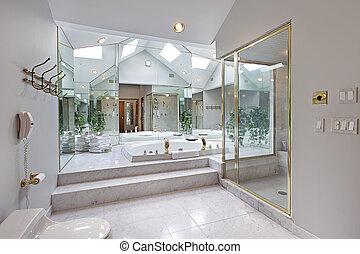 Master bath with mirrored tub area