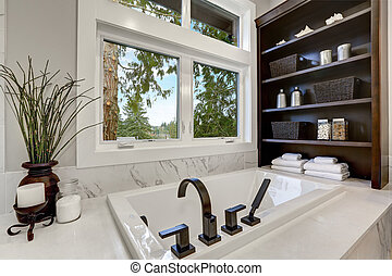 Master modern bathroom interior in luxury home with dark hardwood cabinets, white tub and glass door shower