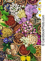 Medicinal Flowers and Herbs
