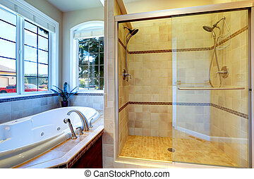 Modern bathroom with whirlpool tub and glass door shower