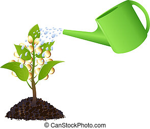 Money plant with watering can