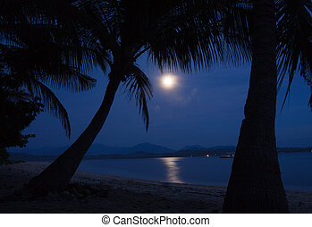 Moonlight on the water