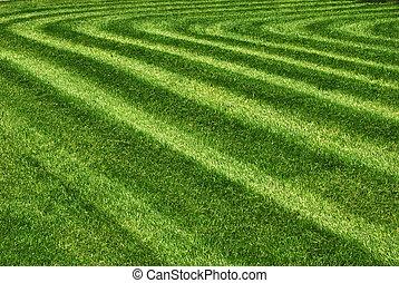 Mowed grass