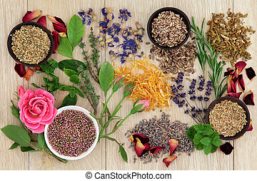 Herbal medicine selection also used in pagan witches magical potions over oak background.