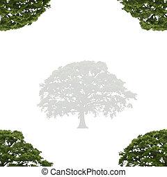 Oak Tree in Summer Abstract