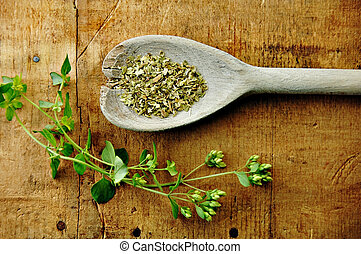 Oregano sprig with dried in a wooden spoon on a rustic wood table.