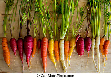 Organic Carrots from vegetable garden on cutting board