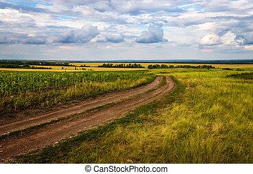 ?ountry road in autumn fields