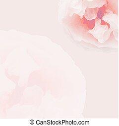 Pink Pastel Rose Poster
