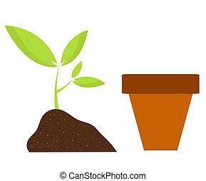 Planting flower in pot. Gardening vector illustration
