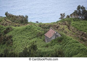A Farming House for Animal Food a the village Ribeira da Janela at the North coast on the Island of Madeira in the Atlantic Ocean of Portugal.  Madeira, Porto Moniz, April, 2018