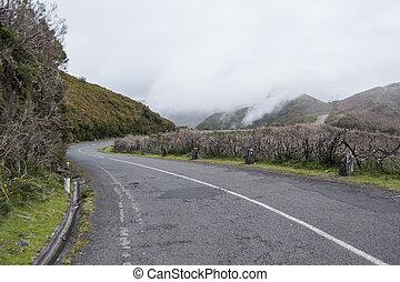the Mountain road at the highland of Ribeira da Janela on the Island of Madeira in the Atlantic Ocean of Portugal.  Madeira, Porto Moniz, April, 2018