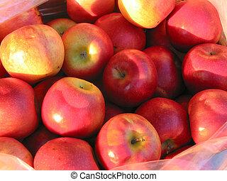 Red apples at farmer's market