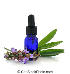 Sage herb flowers and leaves with an aromatherapy essential oil dropper bottle, over white background.