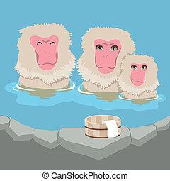 Snow Monkey Onsen Family