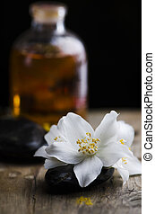 Jasmin flower and scented oil
