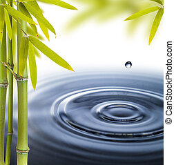 Spa still life with water circles