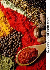 Arrangement of several spices and a wooden spoon