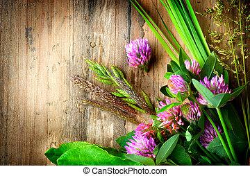 Spring Herbs over Wooden background. Herbal Medicine