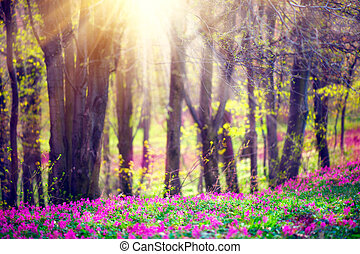 Spring park with green grass, blooming wild flowers and trees. Beautiful nature landscape