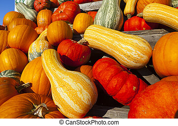 Stacked Many different ornamental gourds on a cart