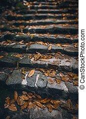 Stone Staiway