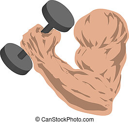 Muscular arm grasping a barbell