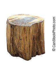 Stump isolate on white background