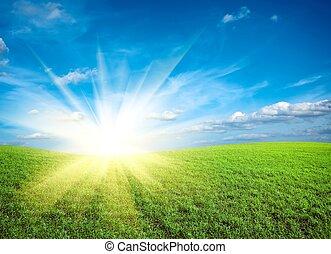 Sunset on field of green fresh grass under blue sky