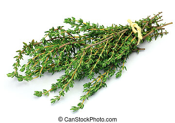 This is fresh herb. I bundled up thyme and took it in a white background.