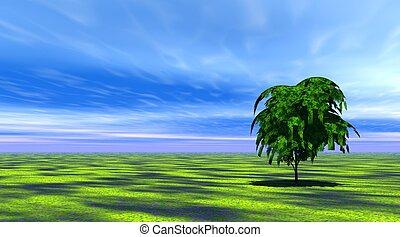 Tree in green grass