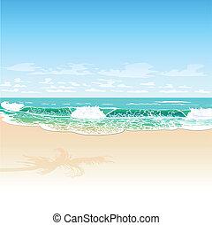 tropic beach
