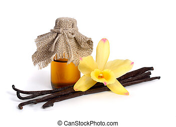 Vanilla essential oil in pharmaceutical bottle