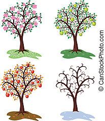 vector set of four seasons of apple tree