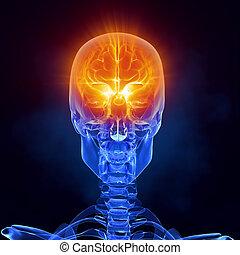 Glowing brain inside skull