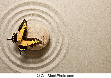 Butterfly sitting on a rock surrounded by sand ripples